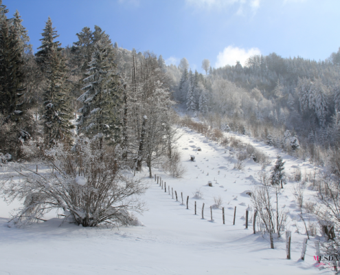 raquettes annecy hiver idees 6