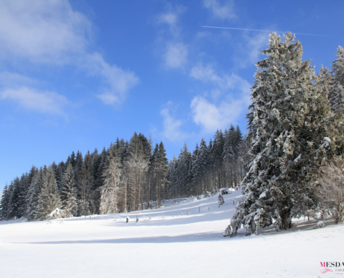 raquettes annecy hiver idees 7